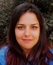 אורטל לוי